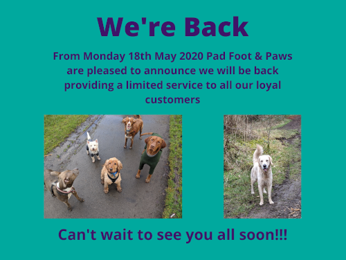 Pad Foot and Paws are back